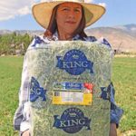 10-Lb Bag of Alfalfa Hay